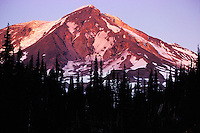 The snow-capped peak of Mt. Adams in Washington is lit with alpenglow shortly before sunset, as seen from along the Pacific Crest Trail midway up the mountain. <br /> <br /> © Michael Forster Rothbart<br /> www.mfrphoto.com <br /> 607-267-4893 o 607-432-5984<br /> 5 Draper St, Oneonta, NY 13820<br /> 86 Three Mile Pond Rd, Vassalboro, ME 04989<br /> info@mfrphoto.com<br /> Photo by: Michael Forster Rothbart<br /> Date: 8/2003    File#:  color slide<br /> ----------<br /> Original caption:<br /> During July and August 2003, Mike and Amy Forster Rothbart hiked from Mt. Adams to near Mt. Rainier, backpacking on the Pacific Crest Trail in Washington State. Here, the bare top of Mt. Adams is lit with alpenglow shortly before sunset.