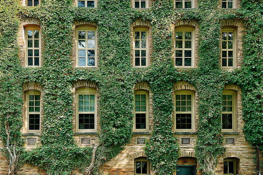 Ivy covered information building, Princeton University, New Jersey, USA