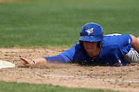 Toronto Blue Jays Shane Opitz #14 dives back to first during a minor league spring training game against the Philadelphia Phillies at the Carpenter Complex on March 16, 2012 in Clearwater, Florida.  (Mike Janes/Four Seam Images)