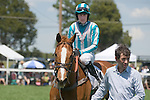25 Apr 2009: Good Night Shirt, ridden by William Dowling, after winning the Foxfield Chase flat race at the Foxfield Races in Charlottesville, Virginia. Good Night Shirt is a two time Eclipse Award winner and has career earnings of $979,493.