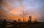 Myanamar Cyclon Nagris The Humen Phoenix 2008