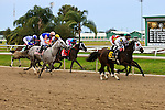 January 16, 2016: Scenes from the Silverbulletday Stakes race in New Orleans Louisiana. Steve Dalmado/ESW/CSM