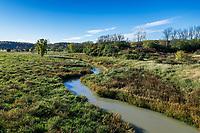 Stream meanders through autumn meadow, Vermont, USA.
