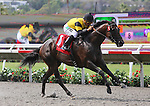 July 26, 2014: Rock Me Baby with Corey Nakatani aboard wins the California Dreamin' Handicap at Del Mar Thoroughbred Club in Del Mar, California. Zoe Metz/ESW/CSM