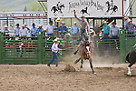 A cowboy rides high in the air above his bucking saddle bronc at the Jordan Valley Big Loop Rodeo, Ore.--saddle bronc riding