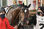February 13, 2021: Proxy in the Risen Star Stakes at Fair Grounds Race Course in New Orleans, Louisiana. Parker Waters/Eclipse Sportswire/CSM