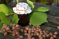 Kind, Junge macht aus Haselnüssen eine eigene Nuss-Schoko-Creme, fertige Creme im Glas (Nutella), Hasel, Ernte, reife Nüsse Haselnuß, Haselnuss, Früchte, Nuß, Nuss, Corylus avellana, Cob, Hazel, Coudrier, Noisetier commun