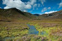 The head of Loch Muick, Cairngorms National Park, Aberdeenshire