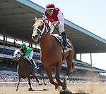 Scenes from around the track on Metropolitan Handicap Day on May 27, 2013 at Belmont Park in Elmont, New York.  (Bob Mayberger/Eclipse Sportswire)