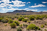 Clouds paint shadows on the ground and green brush provides punctuation along a stretch of Nevada's high desert on a mid June afternoon.
