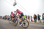 Neilson Powless (USA) and Magnus Cort Nielsen (DEN) EF Education-Nippo climb Col du Tourmalet during Stage 18 of the 2021 Tour de France, running 129.7km from Pau to Luz Ardiden, France. 15th July 2021.  <br /> Picture: A.S.O./Charly Lopez   Cyclefile<br /> <br /> All photos usage must carry mandatory copyright credit (© Cyclefile   A.S.O./Charly Lopez)