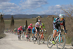 The peloton on sector 2 Bagnaia during Strade Bianche 2019 running 184km from Siena to Siena, held over the white gravel roads of Tuscany, Italy. 9th March 2019.<br /> Picture: Seamus Yore   Cyclefile<br /> <br /> <br /> All photos usage must carry mandatory copyright credit (© Cyclefile   Seamus Yore)