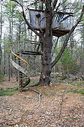 Large tree house at Sandown, New Hampshire Town Forest during the spring months