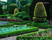 Tom Mackie, FLOWERS, photos, Topiary Garden, Levens Hall, Cumbria, England, GBTM934296-1,#F# Garten, jardín