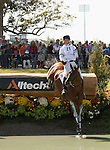 02 October 2010. William Fox-Pitt and Cold Mountain.