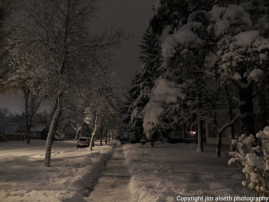 The McKinnon Ravine area provided a nocturnal post-card like setting after a November snowstorm in Edmonton.