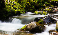 A stream runs through lush 'Iao Valley on the island of Maui.
