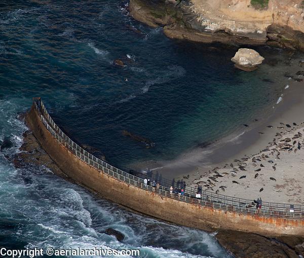 aerial photograph of seals at the Children's Pool Beach, La Jolla, San Diego, County, California