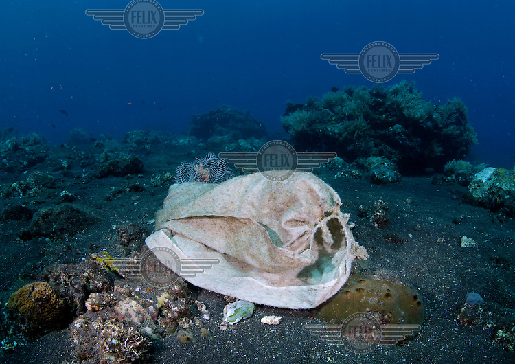 Garbage on a coral reef on the North coast of Bali. Coral growth and marine life has made Tulamben a popular  tourist destiantion for divers. In turn creating business opportunities and jobs for locals who often used to practice destructive fishing methods.  But human activity is still threatening the underwater evironment. The corals which are highly sensitive to environmental changes have faced adverse fishing methods as well as increased water temperatures. .