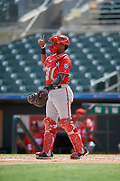 Washington Nationals catcher Israel Pineda (20) during an Instructional League game against the Miami Marlins on September 25, 2019 at Roger Dean Chevrolet Stadium in Jupiter, Florida.  (Mike Janes/Four Seam Images)