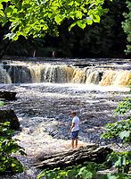 AUG 7 Aysgarth Falls, Yorkshire
