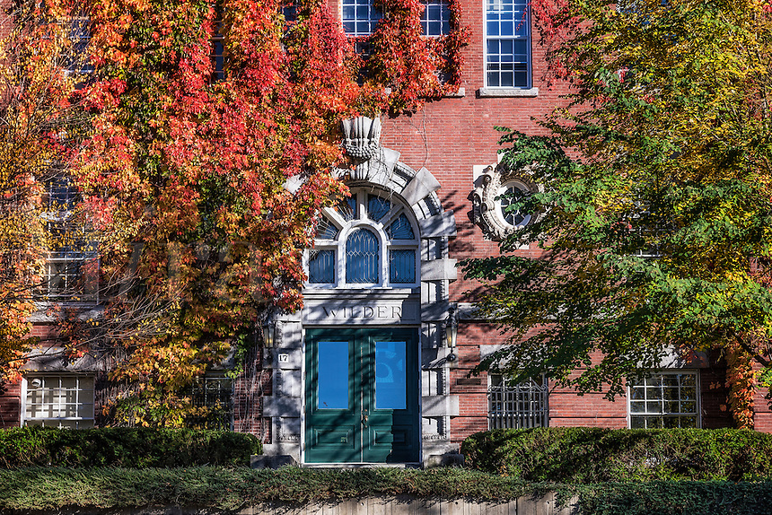 Ivy covered Wilder Hall, Dartmouth University, Hanover, New Hampshire, USA