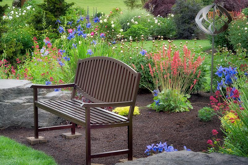 Bench in Adlemans Peony Garden. Salem, Oregon