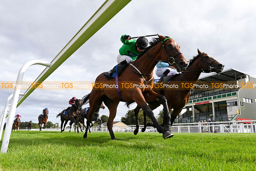 Winner of The Radcliffe & Co Novice Median Auction Stakes (Div 1) Tornadic ridden by Charles Bishop and trained by Eve Johnson Houghton  during Horse Racing at Salisbury Racecourse on 11th September 2020