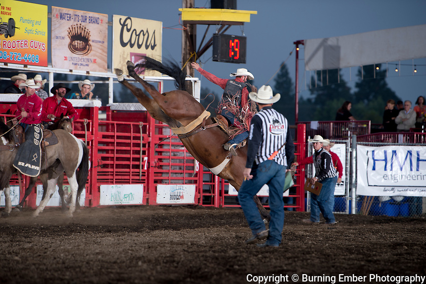 Tanner Hollenback on Corey & Lange's bucking horse Lance during the Saddle Bronc Event during the 2nd perf at the Gem State Stampede August 25th, 2018 2nd perf in Couer D'Alene ID.  Photo by Josh Homer/Burning Ember Photography.  Photo credit must be given on all uses.