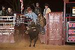 SEBRA - Amelia, VA - 4.4.2015 - Bulls & Action