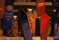 Canned green beans and pecans win first prize blue ribbons, while others are slated for second.