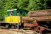 Camp 6 Logging Museum