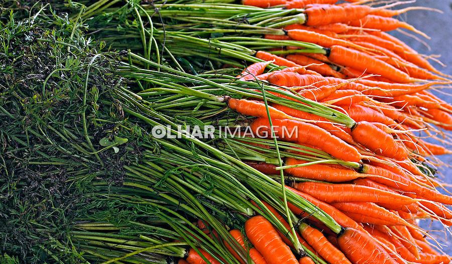 Alimentos orgânicos. Cenoura.  Foto de Rogério Reis.