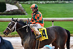 February 28, 2021: Istan Council #4 , ridden by Joseph Talamo after running in the Bayakoa Stakes (Grade 3) for trainer J. Larry Jones at Oaklawn Park in Hot Springs,  Arkansas. Ted McClenning/Eclipse Sportswire/CSM
