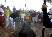A man goes for the final thrust to kill a bull during the bull of the plain 'Toro de la Vega' festival, on September 16, 2008 in Tordesillas. The festival is one of the oldest in Spain with roots dating back to the fifteenth century. The bull has to be enticed across the river from the village to the plain 'Vega' before it can be killed to honour the 'Virgen de la Pena'.  © Pedro ARMESTRE.