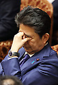 Prime Minister Shinzo Abe attends Lower House's budget committee session