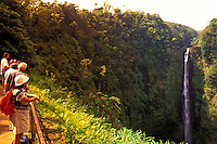 Tourists looking at Akaka falls, near Hilo, on the Big Island