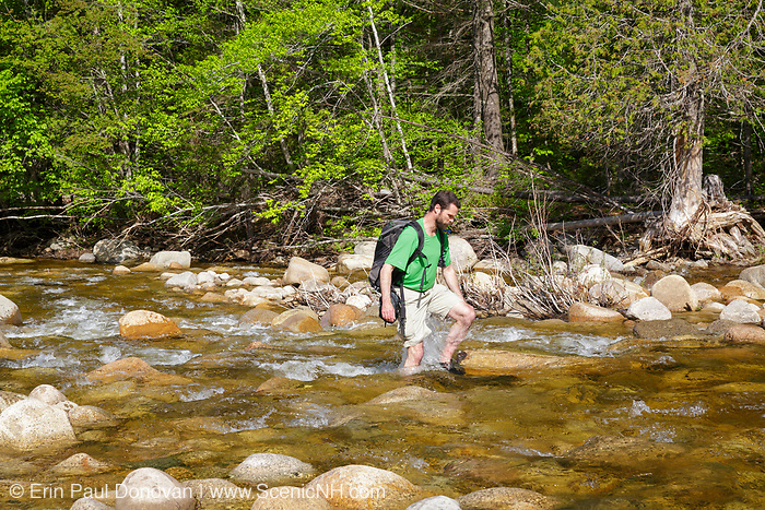 Hiker crossing the East Branch of the Pemigewasset River in the Pemigewasset Wilderness of Lincoln, New Hampshire. This area was part of the East Branch & Lincoln Logging Railroad (1893-1948) era.