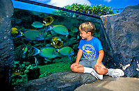 A young boy ( age 7 ) enjoys the colorful reef fishes on display at the Edge of the Reef tank at the Waikiki Aquarium.