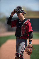 Arizona Diamondbacks catcher Andy Yerzy (27) during a Minor League Spring Training intrasquad game at Salt River Fields at Talking Stick on March 12, 2018 in Scottsdale, Arizona. (Zachary Lucy/Four Seam Images)