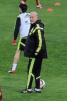 Spanish National Team's  training at Ciudad del Futbol stadium in Las Rozas, Madrid, Spain. In the pic: Vicente del Bosque. March 25, 2015. (ALTERPHOTOS/Luis Fernandez) /NORTEphoto.com
