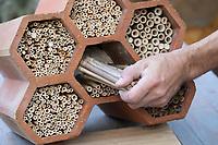 """Wildbienen-Nisthilfe Modell """"Flaschenregal"""". Besteht Röhrchen, Niströhrchen, Niströhren aus Bambus, Bambusröhrchen und Schilf, Schilfröhrchen, Schilf-Röhrchen, Wildbienen-Nisthilfen, Wildbienen-Nisthilfe selbermachen, selber machen, Wildbienenhotel, Insektenhotel, Wildbienen-Hotel, Insekten-Hotel"""