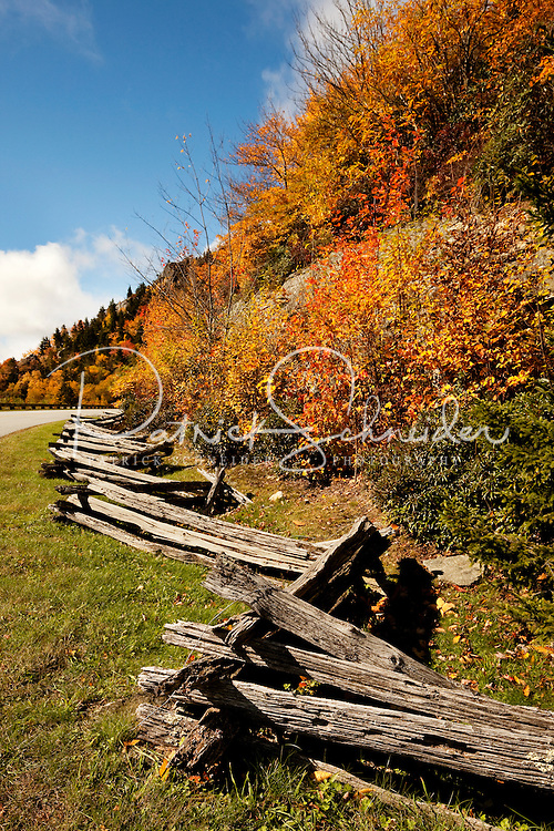 A wooden fence zig-zags along the NC Blue Ridge Parkway near the Linn Cove Viaduct and Grandfather Mountains. Photo taken in autumn 2009, when the mountain forests and trees transform themselves a tapestry of brilliant orange, red and yellow autumn colors. Linn Cove Viaduct, considered by some as the Grandfather Mountain viaduct or the Blue Ridge Parkway viaduct, is a 1243-foot concrete segmental bridge built in 1979 to avoid environmentally damaging Grandfather Mountain. It is considered one of the most complicated concrete bridges ever built. Grandfather Mountain is about a two-hour drive from Charlotte.