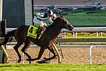 Toronto, ON - September  20: Gretzky the Great, #4, ridden by Kazushi Kimura  runs to victory at the Summer Stakes at Woodbine Race Course on September 20, 2020 in Toronto, Ontario. (Photo by Victor Biro/Eclipse Sportswire/Getty Images)