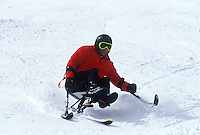Active lifestyle for handicapped person. Skiing.
