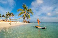 Maldives, Rangali Island. Conrad Hilton Resort. Woman on a paddleboard on the ocean, near a palm tree. (MR)