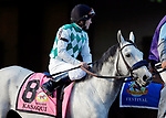 ARLINGTON HEIGHTS, IL - AUGUST 12: Kasaqui #8, ridden by James Graham, during the post parade before the Arlington Million on Arlington Million Day at Arlington Park on August 12, 2017 in Arlington Heights, Illinois. (Photo by Jon Durr/Eclipse Sportswire/Getty Images)