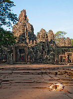 A wild dog sleeps in the sunshine outside the Bayon temple at Angkor, Siem Reap Province, Cambodia