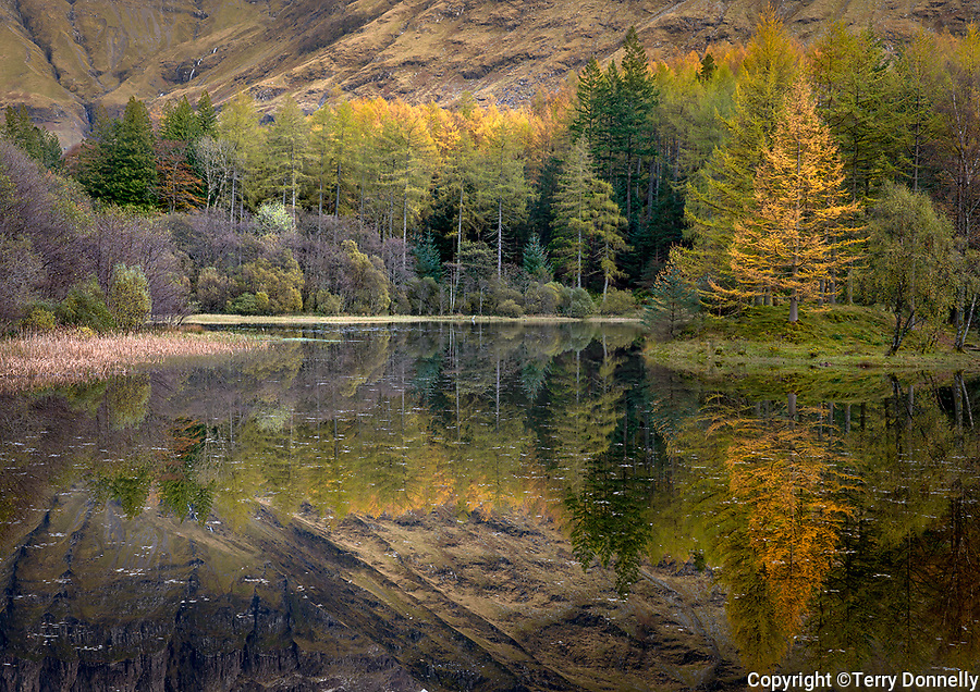 Glencoe, scotland, highlands, reflections, autumn, fall, color, travel, travel destination, tree, forest, mountain, grampian, highlands