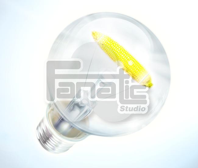 Illustrative image of light bulb with corn cob representing bio energy